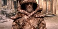 Skaal Armor