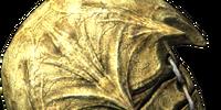 Bonemold Shield (Dragonborn)