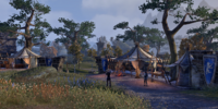 Wayrest Regiment's Camp
