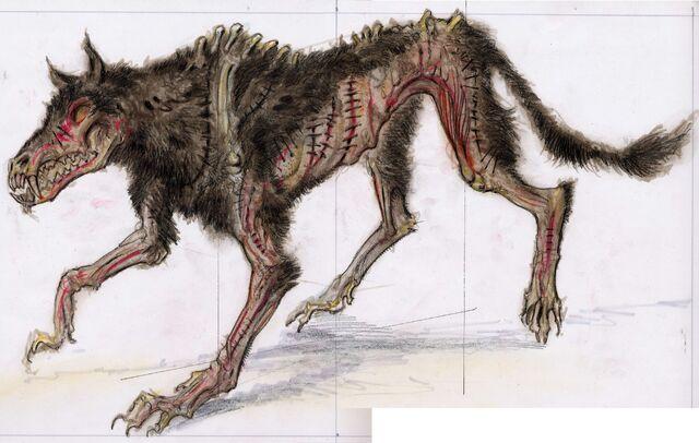 File:Skinnedhoundconcept1.jpg
