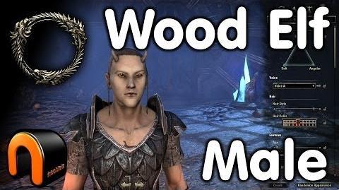 Elder Scrolls Online -- Wood Elf Male - Character Creation
