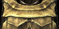 Bonemold Armor (Armor Piece)