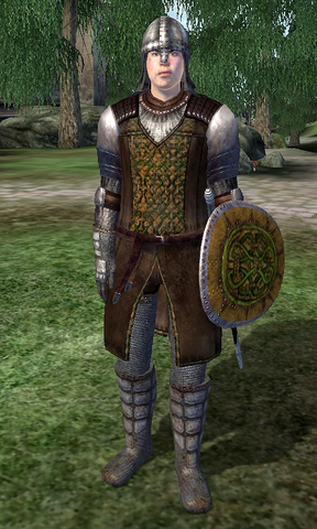 File:Cheydinhal Gate Guard.png