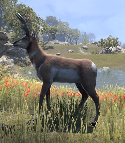 File:Antelope (Online).png