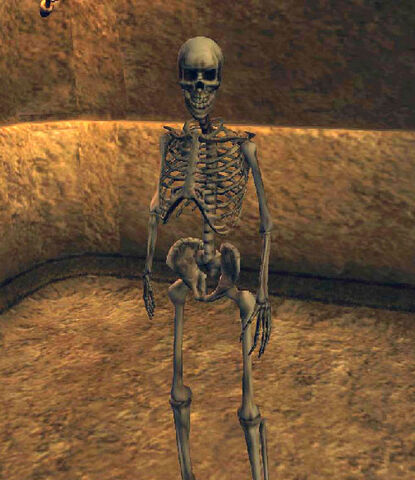 File:Skeleton Archer (Morrowind).jpg
