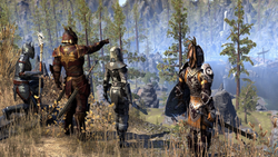 Guilds and Glory The 4-DLC Mega-Pack