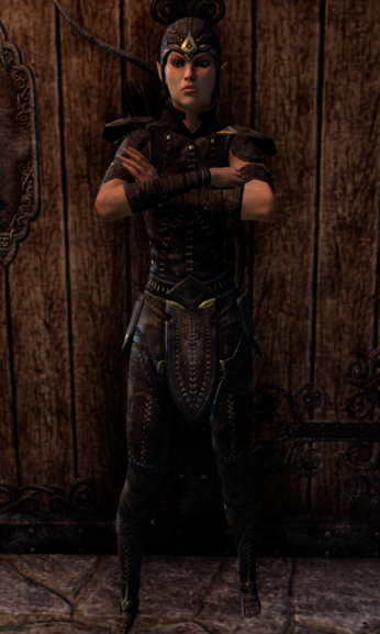 File:Soldier Garion.png