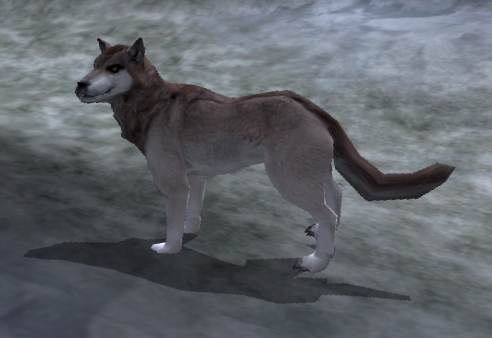 File:Snow Wolf.jpg