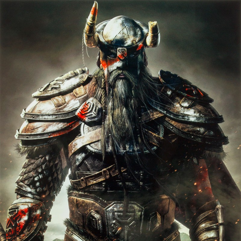 We Need More Glorious Hairs And Beards Elder Scrolls Online