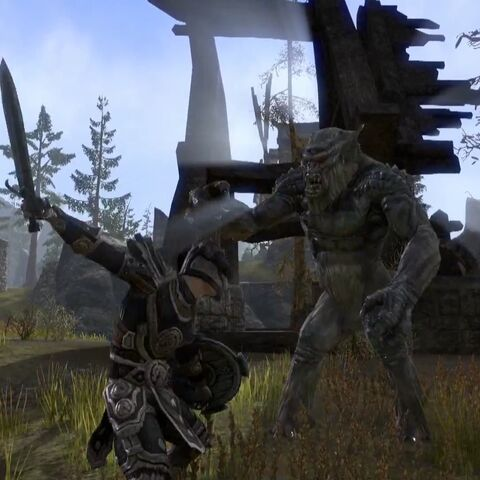 File:Nord Fighting a Troll.jpg