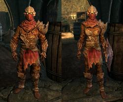 Chitin Armor - Both