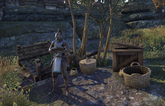 Guild Store (The Market)