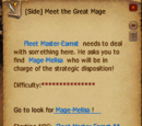 Meet the Great Mage