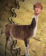 Napoleon Dynamite As Tina The Llama