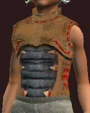Cryptic Adroit Breastplate (Equipped)