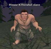 House K'Frerahel slave