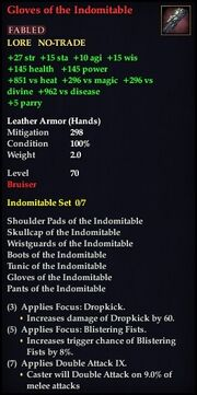 Gloves of the Indomitable