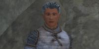 A Kaentrik troubador