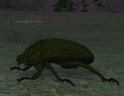A sludge beetle