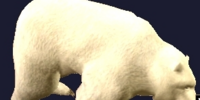 An Erollisi Teddy Bear