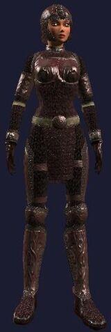 File:Harmonious Blood Mail (Armor Set) (Visible, Female).jpg