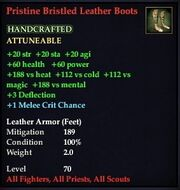 Pristine Bristled Leather Boots