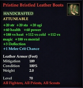 File:Pristine Bristled Leather Boots.jpg