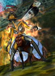 Ziza Cerata (Advanced Solo)