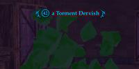 A Torment Dervish