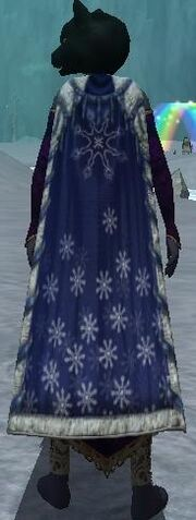 Snowfall Cape (Equipped)