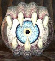 Race evil eye