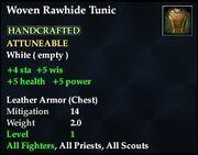 Woven Rawhide Tunic