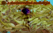 A shadowveiled soulblight
