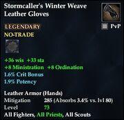 Stormcaller's Winter Weave Leather Gloves