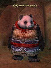 A Hua Mein guard