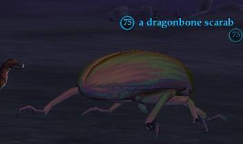 File:A dragonbone scarab.jpg