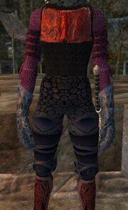 Doomseer leggings worn