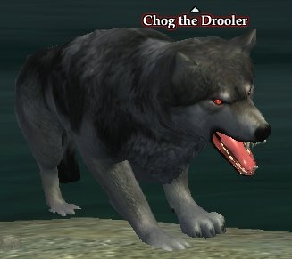 File:Chog the Drooler.jpg