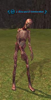 A diseased tormentor