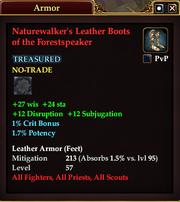 Naturewalker's Leather Boots of the Forestspeaker