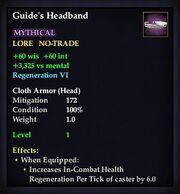 Guide's Headband