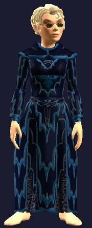 Festive Blue Robe (Equipped)
