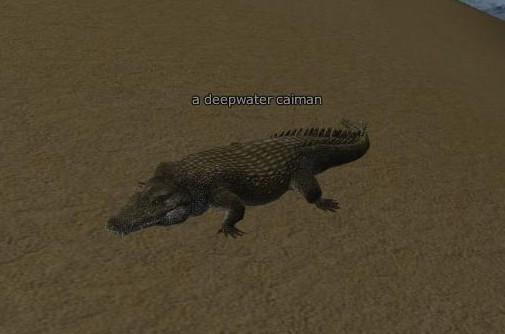 File:Deepwater caiman.jpg