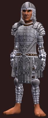Forest Stalker's Citadel (Armor Set) (Visible, Male)