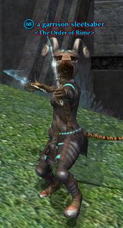 A garrison sleetsaber