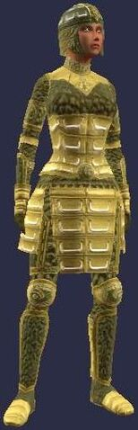 File:Elder's Armor (female).jpg