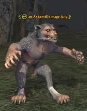 An Askerville mage fang