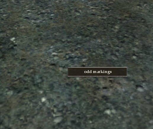 File:Odd markings.jpg