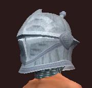 Peerless Sentry's Helmet (Equipped)