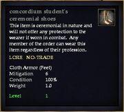 Concordium student's ceremonial shoes